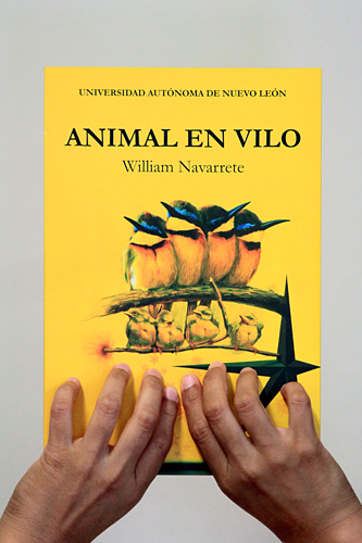 novpoesia_animal